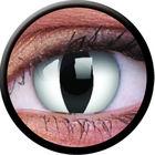 ColourVue CRAZY ČOČKY - Viper (2 ks tříměsíční) - dioptrické - doprodej