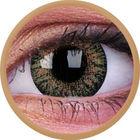 ColourVue Trublends One-Day - Brown dioptrické (10 čoček)