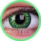 ColourVue Trublends One-Day - Turquoise  dioptrické (10 čoček)