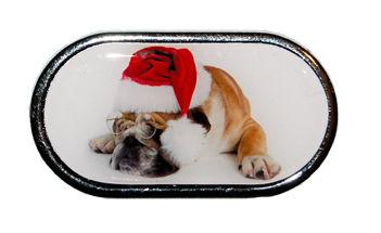 Pouzdro se zrcátkem Vánoční motiv - Pes v brýlích