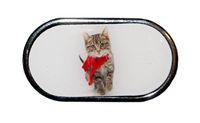 Pouzdro se zrcátkem Vánoční motiv - Kotě v šále