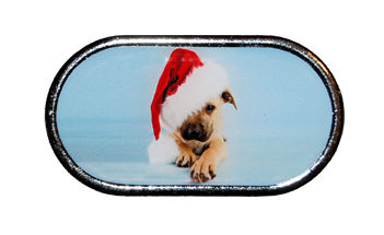 Pouzdro se zrcátkem Vánoční motiv - Štěně s čepicí přes oko