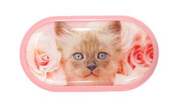 Pouzdro se zrcátkem motiv kočky a psi - Kotě v růžích