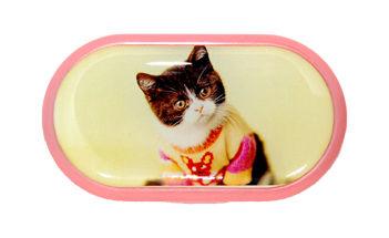 Pouzdro se zrcátkem motiv kočky a psi - Kotě ve svetru