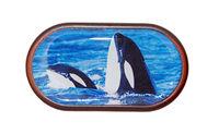 Pouzdro se zrcátkem Divoká zvířata - Kosatky