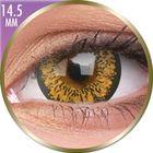 Phantasee Big Eyes - Baby Brown (2 čočky měsíční) - dioptrické
