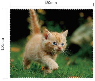 Hadřík na brýle z mikrovlákna - Kotě