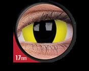 ColourVue Crazy čočky 17 mm - Cheetara (2 ks roční) nedioprické